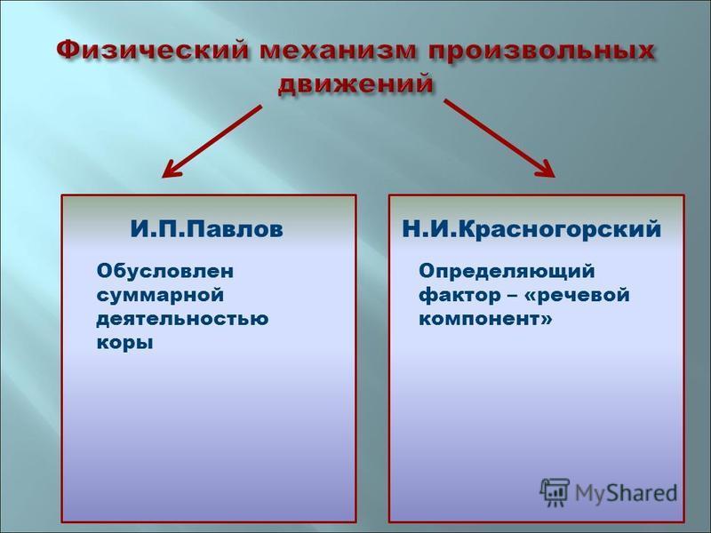 И.П.ПавловН.И.Красногорский Обусловлен суммарной деятельностью коры Определяющий фактор – «речевой компонент»