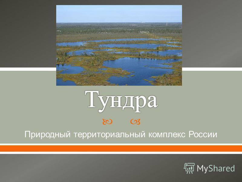 Природный территориальный комплекс России