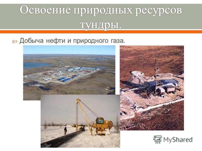 Добыча нефти и природного газа.