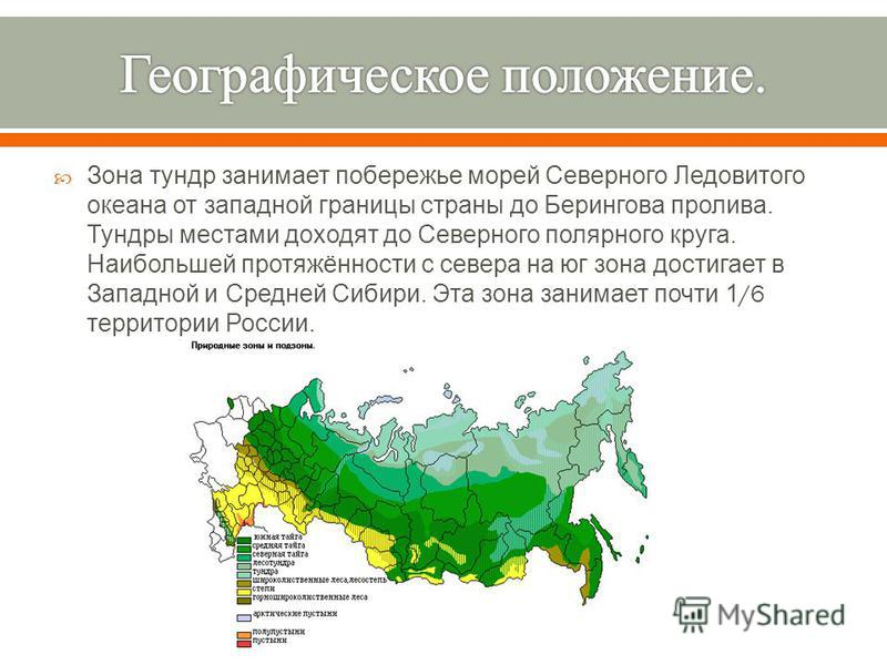 Зона тундр занимает побережье морей Северного Ледовитого океана от западной границы страны до Берингова пролива. Тундры местами доходят до Северного полярного круга. Наибольшей протяжённости с севера на юг зона достигает в Западной и Средней Сибири.