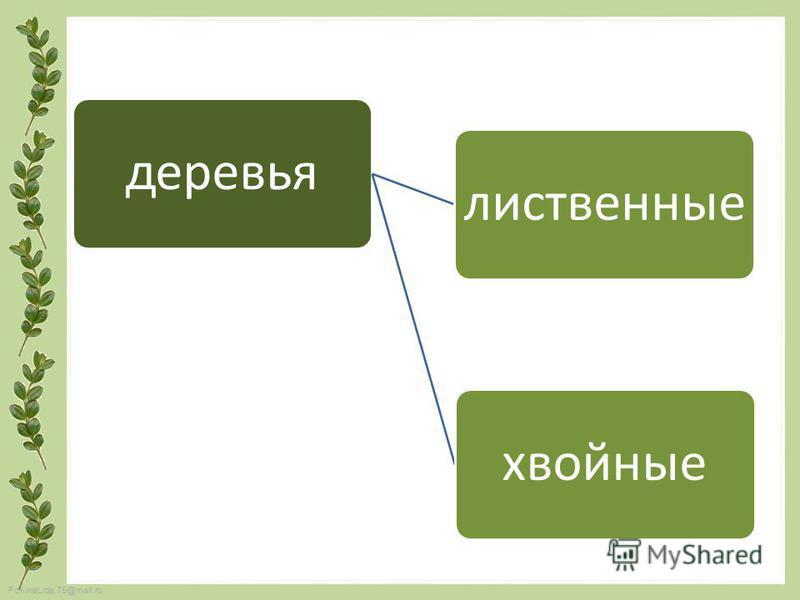 FokinaLida.75@mail.ru деревья лиственные хвойные