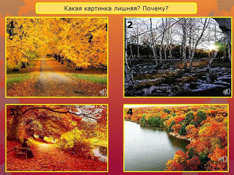 На картинках изображена разная осень: ранняя, золотая, поздняя. Найди и назови изображение осени ранней, золотой, поздней. Правильно ли они расположены, Как нужно по порядку разместить картинки? Назови осенние месяцы. Соответствуют ли картинки и назв