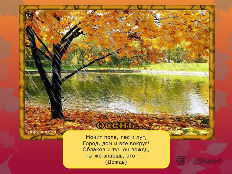 Становится холоднее. Растения готовятся к зиме. Желтеют листья, опадают. Такой признак осени называют листопадом. Листья осенью очень красивые: жёлтые, бордовые, красные, оранжевые.