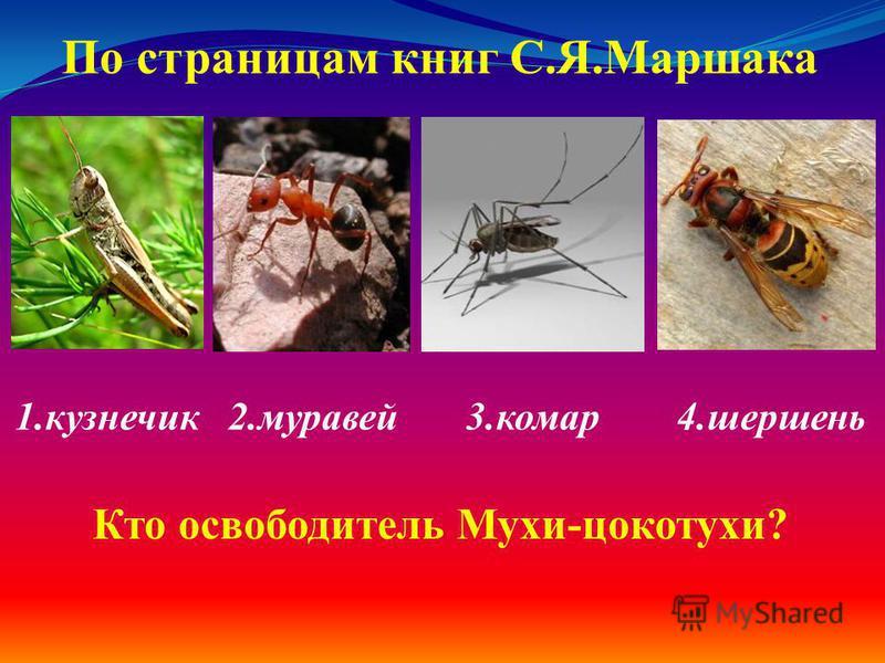 1. кузнечик 2. муравей 3. комар 4. шершень По страницам книг С.Я.Маршака Кто освободитель Мухи-цокотухи?