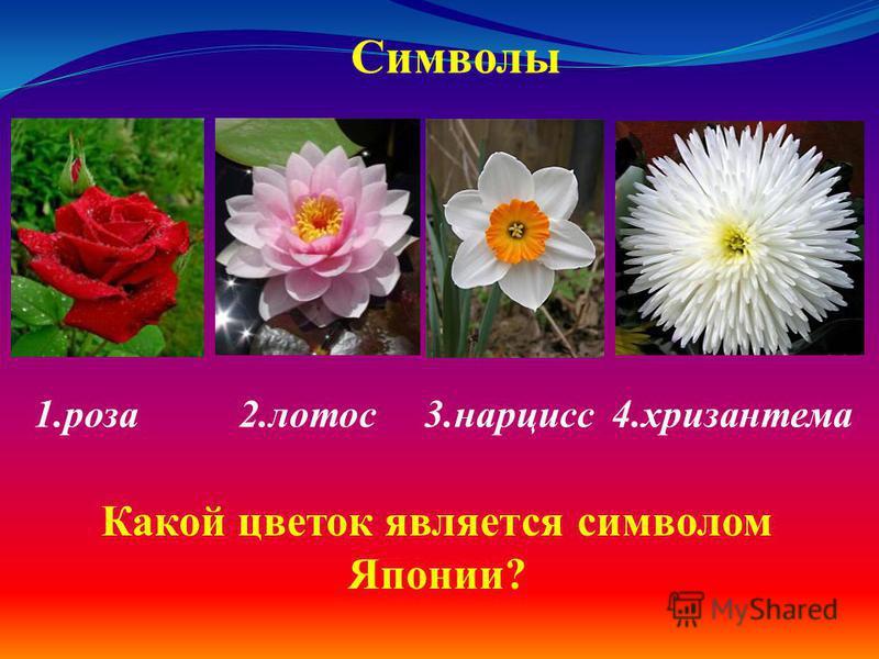 1. роза 2. лотос 3. нарцисс 4. хризантема Символы Какой цветок является символом Японии?
