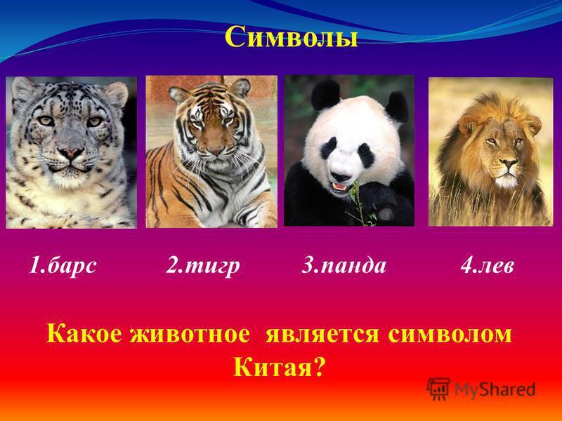 1. барс 2. тигр 3. панда 4. лев Символы Какое животное является символом Китая?