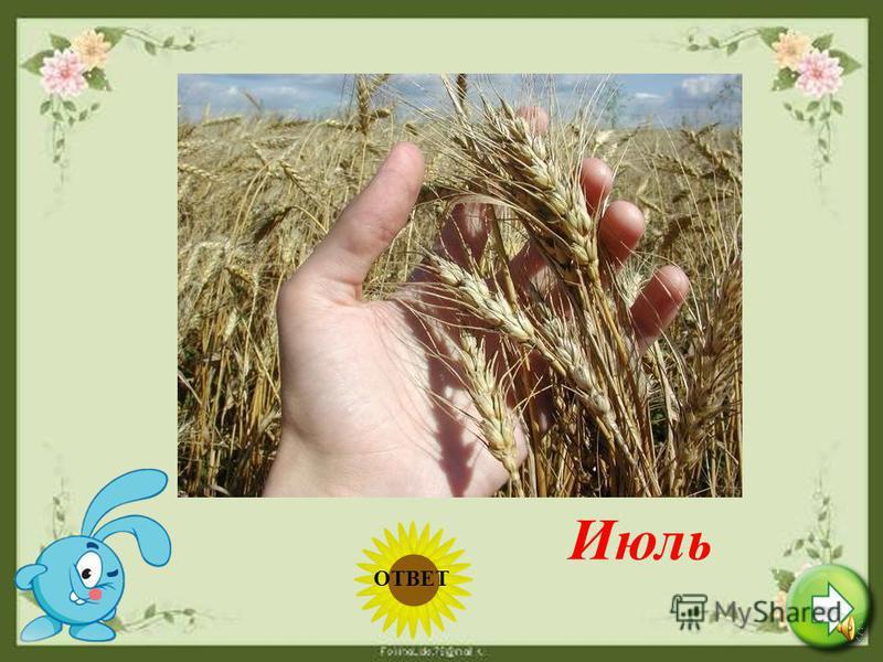 Теплый, длинный-длинный день В полдень крохотная тень. Зацветает в поле колос, Подает кузнечик голос. Дозревает земляника. Что за месяц? Подскажи-ка! Июнь ОТВЕТ