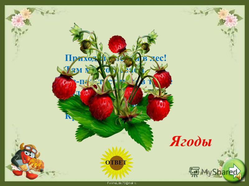 Август Этот летний месяц жаркий Дарит всем свои подарки: Сливы, яблоки и груши. Фрукты варим, фрукты сушим. Он - последний месяц лета, Осень рядом, близко где-то. ОТВЕТ