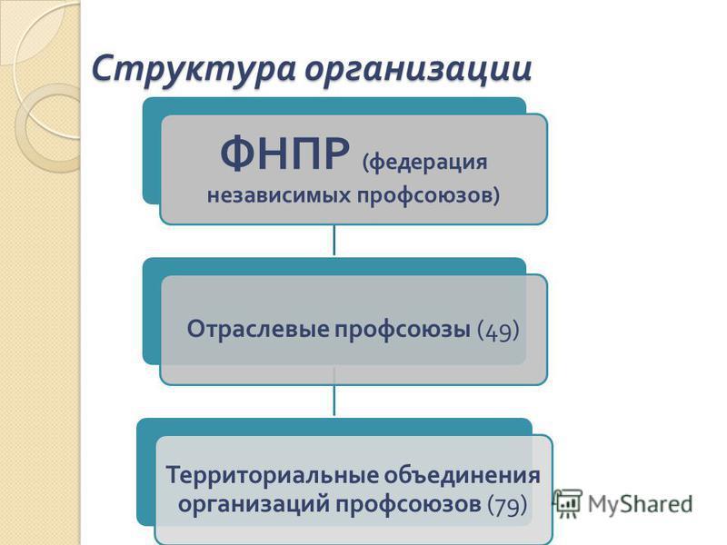 Структура организации ФНПР ( федерация независимых профсоюзов ) Отраслевые профсоюзы (49) Территориальные объединения организаций профсоюзов (79)