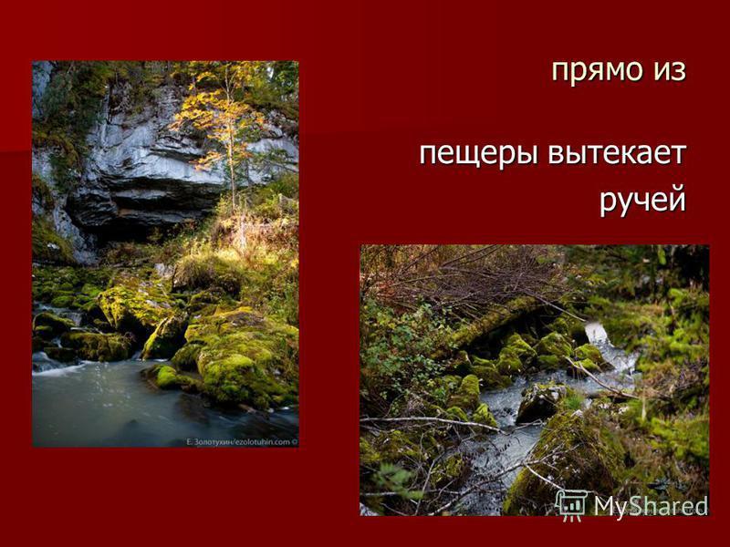 прямо из пещеры вытекает ручей ручей