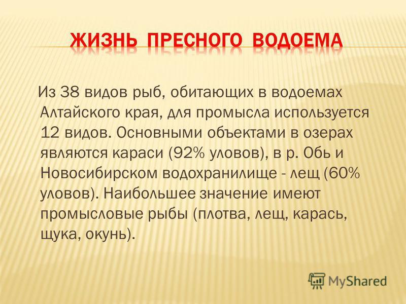 Из 38 видов рыб, обитающих в водоемах Алтайского края, для промысла используется 12 видов. Основными объектами в озерах являются караси (92% уловов), в р. Обь и Новосибирском водохранилище - лещ (60% уловов). Наибольшее значение имеют промысловые рыб