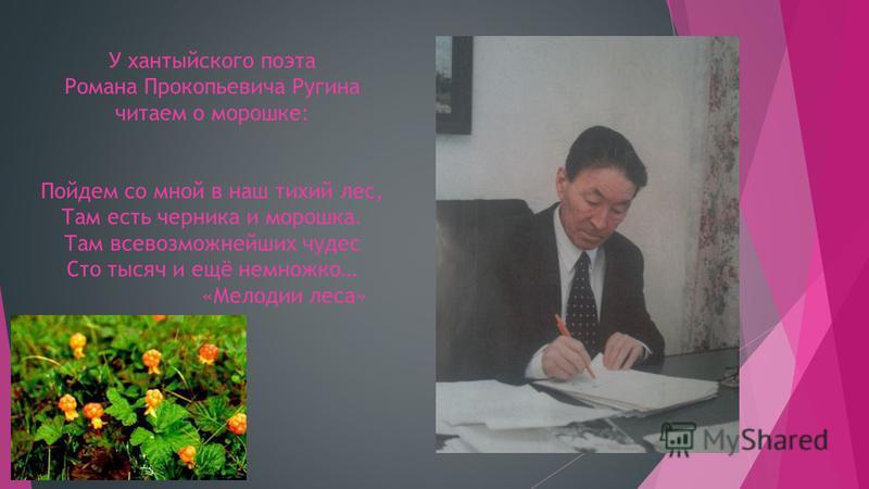 У хантыйского поэта Романа Прокопьевича Ругина читаем о морошке: Пойдем со мной в наш тихий лес, Там есть черника и морошка. Там всевозможнейших чудес Сто тысяч и ещё немножко… «Мелодии леса»