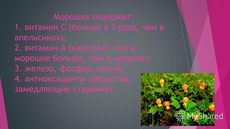 Морошка содержит: 1. витамин С (больше в 3 раза, чем в апельсинах); 2. витамин А (каротин) – его в морошке больше, чем в моркови; 3. железо, фосфор, калий; 4. антиоксиданты (вещества, замедляющие старение)
