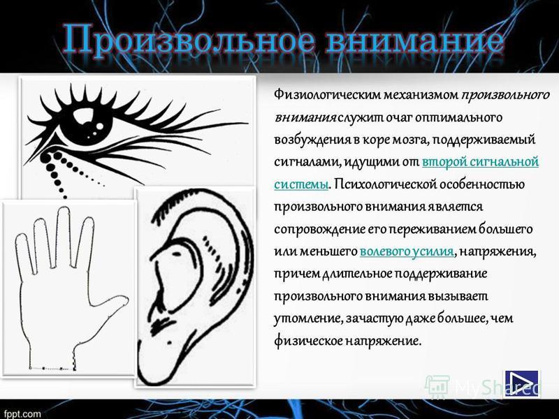 Физиологическим механизмом произвольного внимания служит очаг оптимального возбуждения в коре мозга, поддерживаемый сигналами, идущими от второй сигнальной системы. Психологической особенностью произвольного внимания является сопровождение его пережи