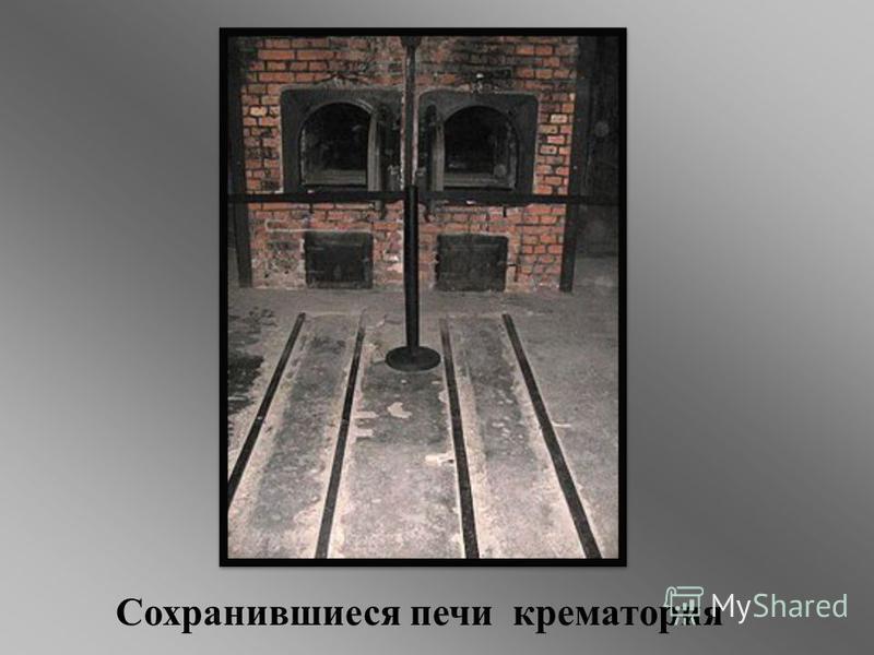 Сохранившиеся печи крематория