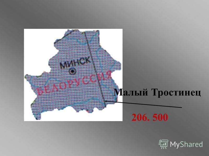 Малый Тростинец 206. 500