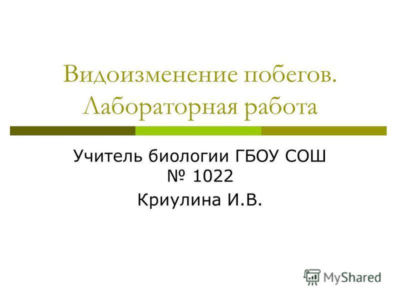Видоизменение побегов. Лабораторная работа Учитель биологии ГБОУ СОШ 1022 Криулина И.В.