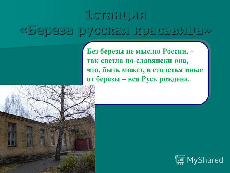 1 станция «Береза русская красавица» Без березы не мыслю России, - так светла по-славянски она, что, быть может, в столетья иные от березы – вся Русь рождена.