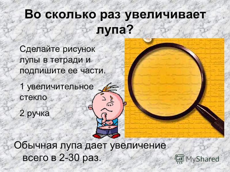 Во сколько раз увеличивает лупа? Обычная лупа дает увеличение всего в 2-30 раз. Сделайте рисунок лупы в тетради и подпишите ее части. 1 увеличительное стекло 2 ручка