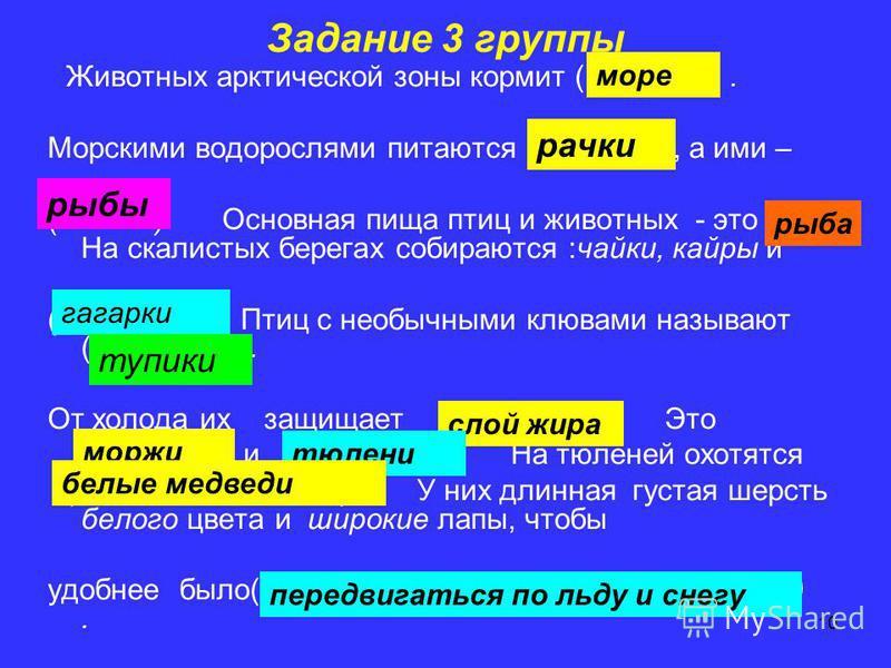 10 Задание 3 группы Животных арктической зоны кормит (…………). Морскими водорослями питаются (…………), а ими – (……….). Основная пища птиц и животных - это (… На скалистых берегах собираются :чайки, кайры и (…………….). Птиц с необычными клювами называют (……