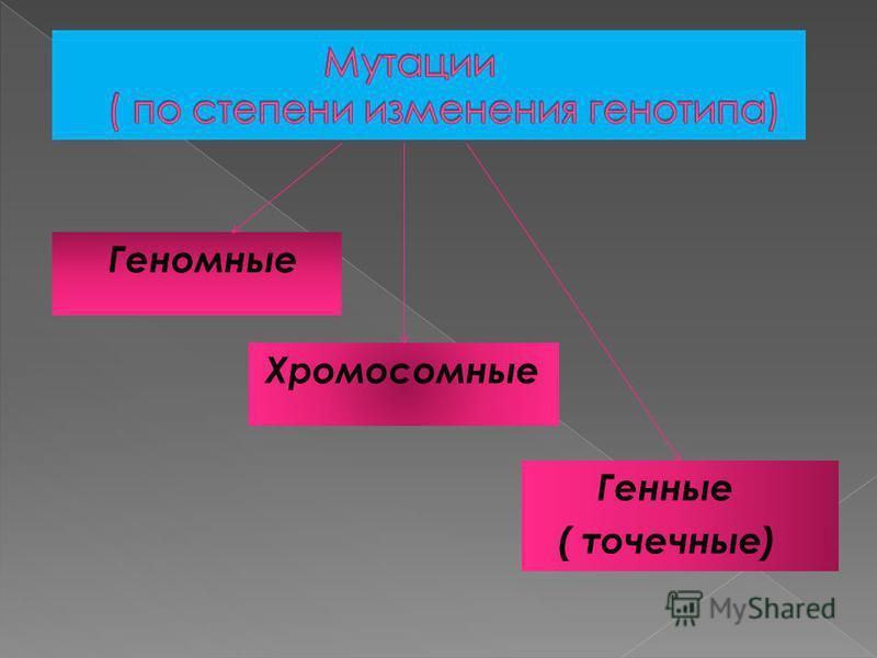 Генные ( точечные) Хромосомные Геномные