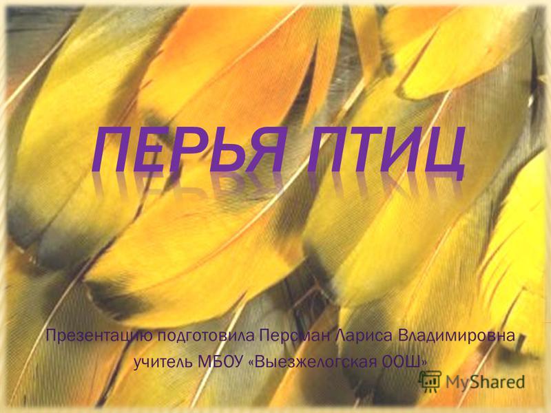 Презентацию подготовила Персман Лариса Владимировна учитель МБОУ «Выезжелогская ООШ»