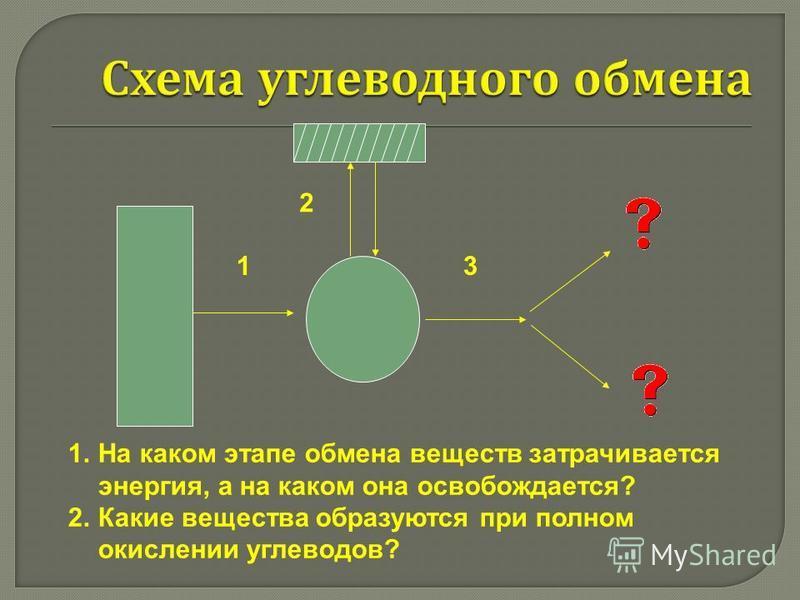 1. На каком этапе обмена веществ затрачивается энергия, а на каком она освобождается? 2. Какие вещества образуются при полном окислении углеводов? 1 2 3