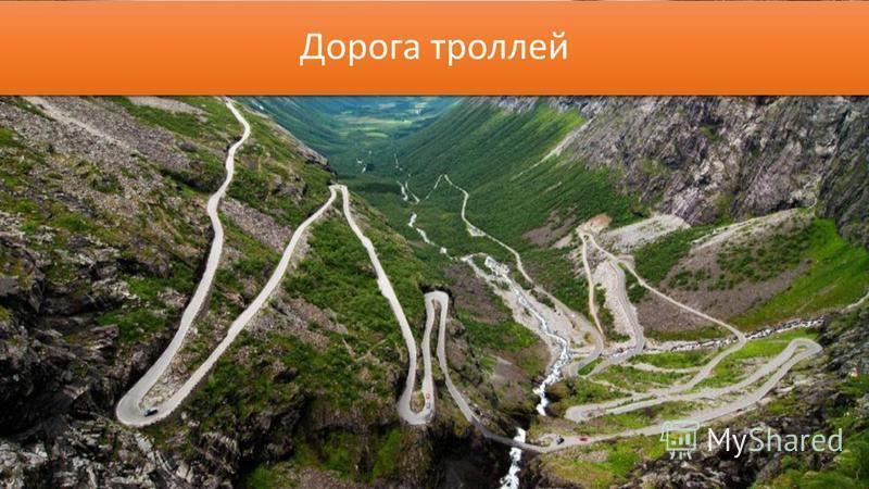 Дорога троллей