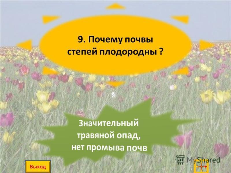 9. Почему почвы степей плодородны ? Выход