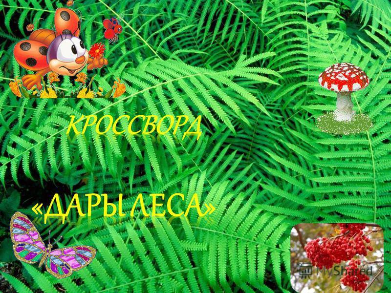 Берегите Землю. Берегите Жаворонка в голубом зените, Бабочку на листьях повилики, На тропинке солнечные блики… Ястреба, парящего над полем, Ясный месяц над речным покоем, Ласточку, мелькающую в жите. Берегите Землю! Берегите!