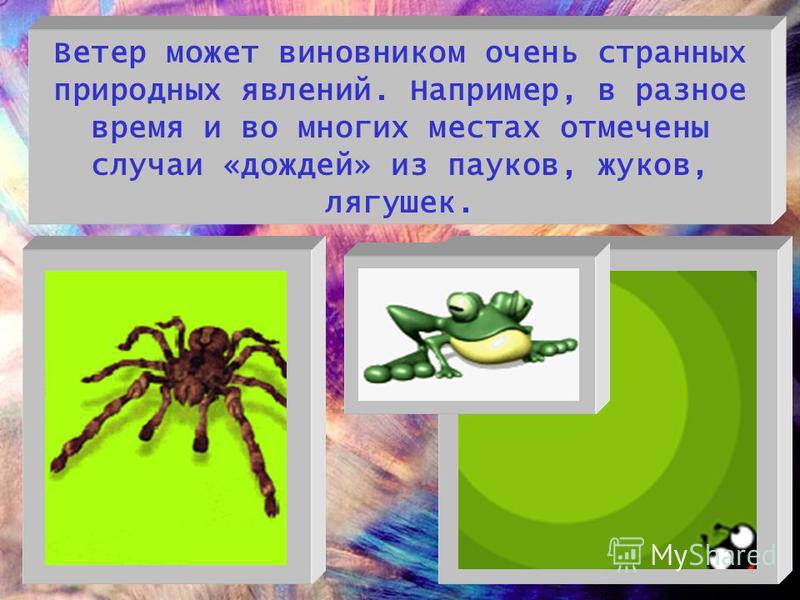 Ветер может виновником очень странных природных явлений. Например, в разное время и во многих местах отмечены случаи «дождей» из пауков, жуков, лягушек.