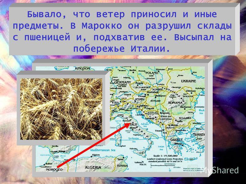 Бывало, что ветер приносил и иные предметы. В Марокко он разрушил склады с пшеницей и, подхватив ее. Высыпал на побережье Италии.