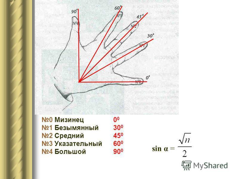 0 Мизинец 0 0 1 Безымянный 30 0 2 Средний 45 0 3 Указательный 60 0 4 Большой 90 0 sin α =