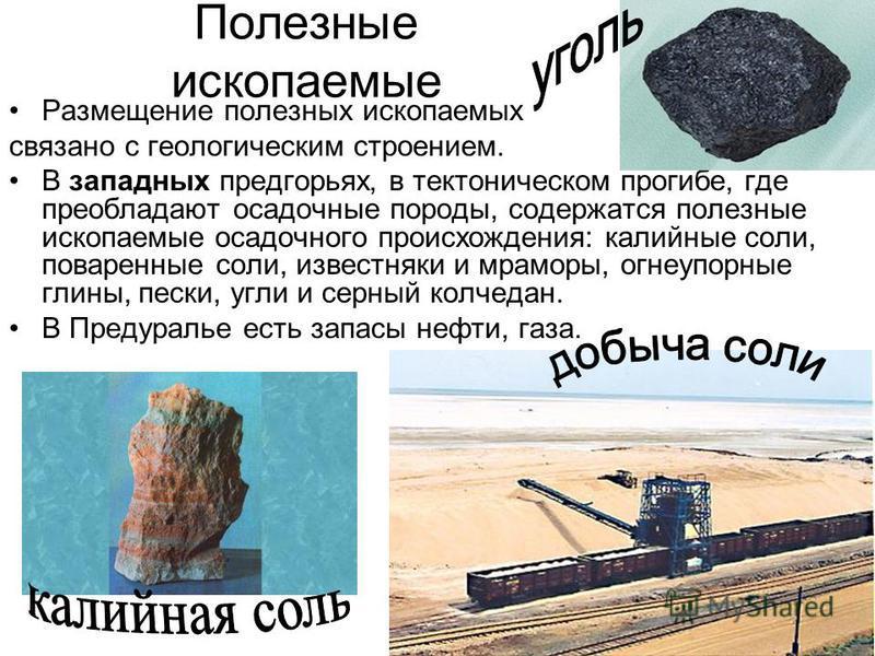 Полезные ископаемые Размещение полезных ископаемых связано с геологическим строением. В западных предгорьях, в тектоническом прогибе, где преобладают осадочные породы, содержатся полезные ископаемые осадочного происхождения: калийные соли, поваренные