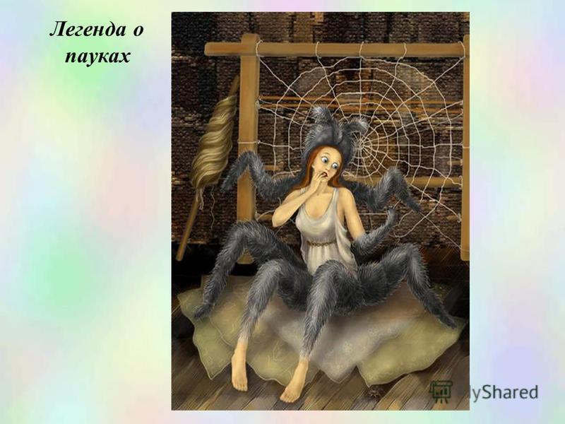 Легенда о пауках
