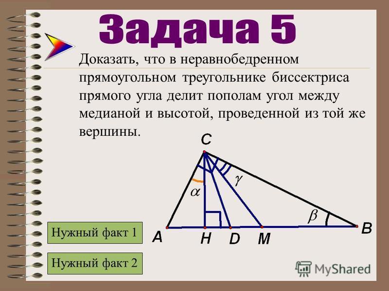 Доказать, что в неравнобедренном прямоугольном треугольнике биссектриса прямого угла делит пополам угол между медианой и высотой, проведенной из той же вершины. Нужный факт 2 Нужный факт 1