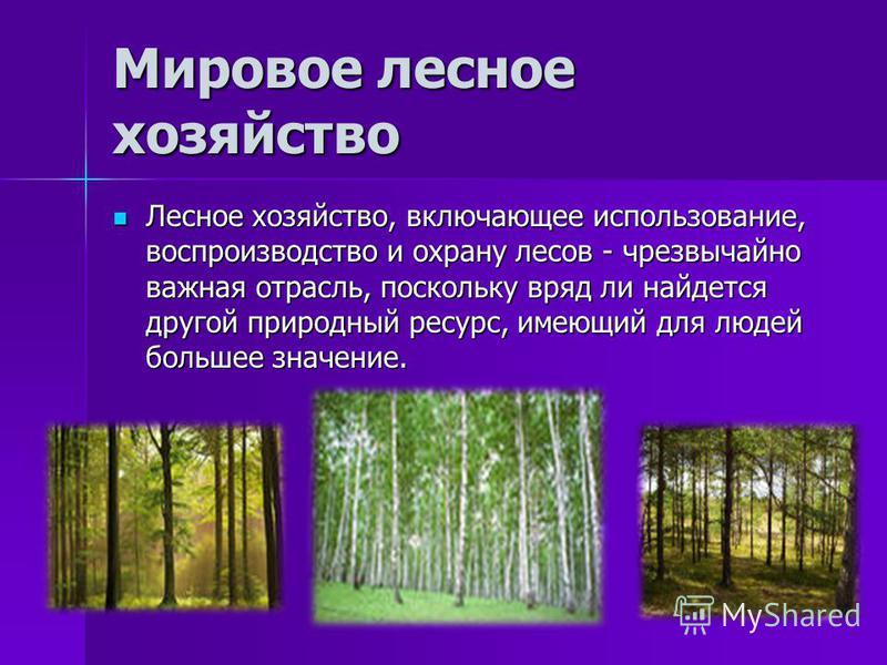 Мировое лесное хозяйство Лесное хозяйство, включающее использование, воспроизводство и охрану лесов - чрезвычайно важная отрасль, поскольку вряд ли найдется другой природный ресурс, имеющий для людей большее значение. Лесное хозяйство, включающее исп