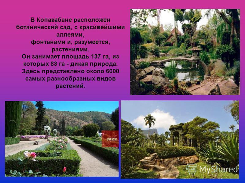 В Копакабане расположен ботанический сад, с красивейшими аллеями, фонтанами и, разумеется, растениями. Он занимает площадь 137 га, из которых 83 га - дикая природа. Здесь представлено около 6000 самых разнообразных видов растений.