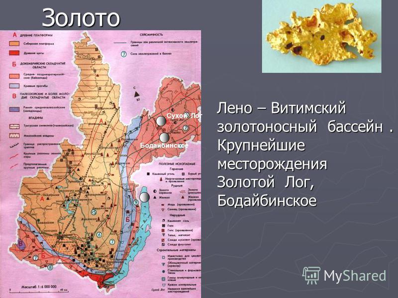 Золото Лено – Витимский золотоносный бассейн. Крупнейшие месторождения Золотой Лог, Бодайбинское Сухой Лог Бодайбинское