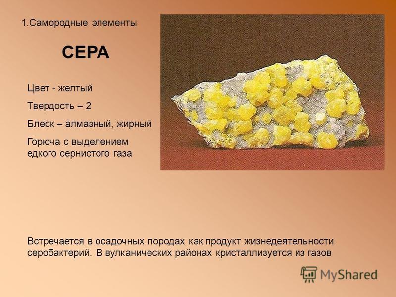1. Самородные элементы СЕРА Цвет - желтый Твердость – 2 Блеск – алмазный, жирный Горюча с выделением едкого сернистого газа Встречается в осадочных породах как продукт жизнедеятельности серобактерий. В вулканических районах кристаллизуется из газов