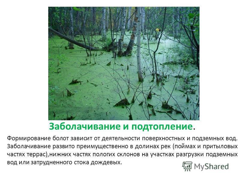 Заболачивание и подтопление. Формирование болот зависит от деятельности поверхностных и подземных вод. Заболачивание развито преимущественно в долинах рек (поймах и при тыловых частях террас),нижних частях пологих склонов на участках разгрузки подзем