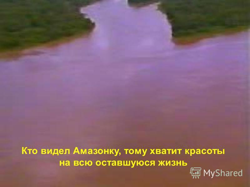 Кто видел Амазонку, тому хватит красоты на всю оставшуюся жизнь