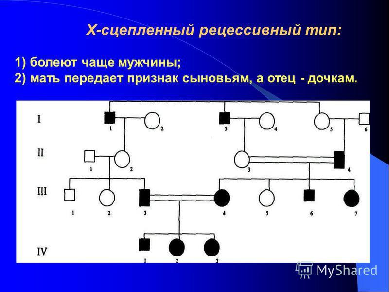 Х-сцепленный рецессивный тип: 1) болеют чаще мужчины; 2) мать передает признак сыновьям, а отец - дочкам.