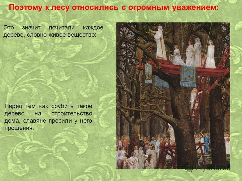 Поэтому к лесу относились с огромным уважением: Это значит почитали каждое дерево, словно живое вещество: Перед тем как срубить такое дерево на строительство дома, славяне просили у него прощения: