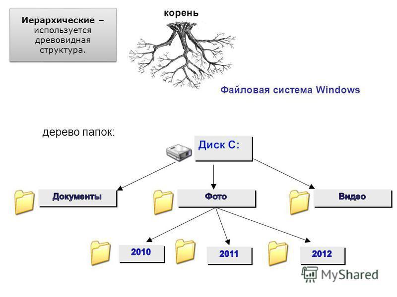 Иерархические – используется древовидная структура. Генеалогическое дерево