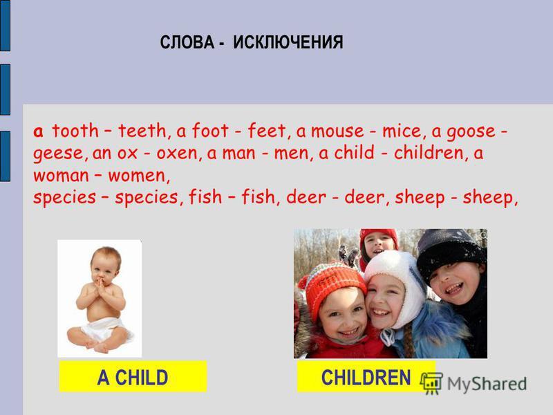 СЛОВА - ИСКЛЮЧЕНИЯ а tooth – teeth, а foot - feet, а mouse - mice, а goose - geese, an ox - oxen, a man - men, a child - children, a woman – women, species – species, fish – fish, deer - deer, sheep - sheep, А CHILDCHILDREN