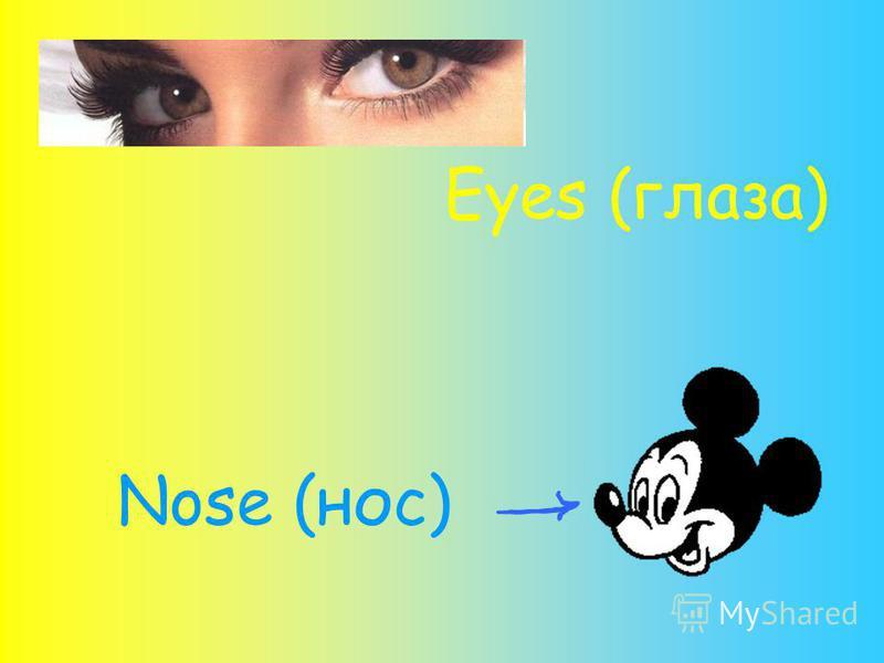 Eyes (глаза) Nose (нос)