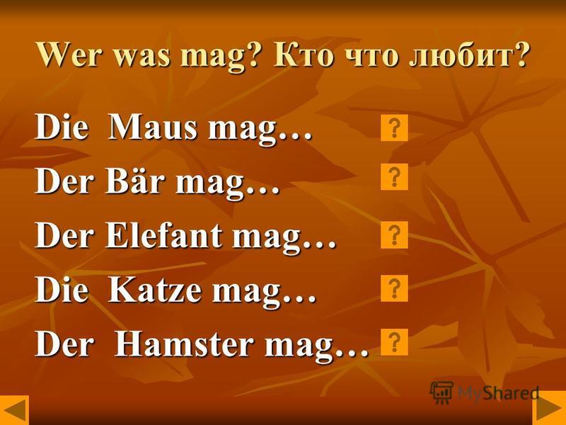 Wer was mag? Кто что любит? Die Maus mag… Der Bär mag… Der Elefant mag… Die Katze mag… Der Hamster mag…