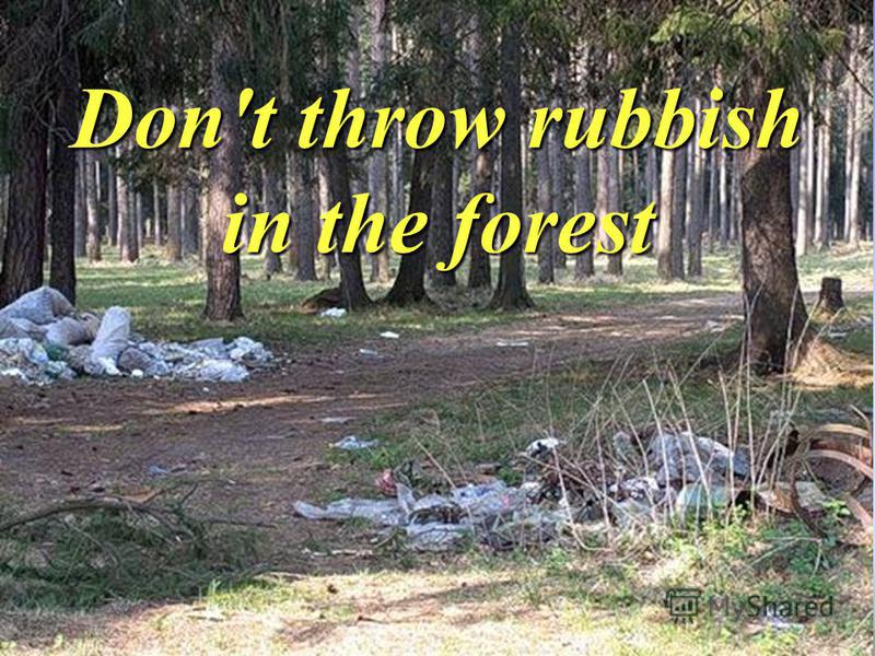 Don't throw rubbish in the forest