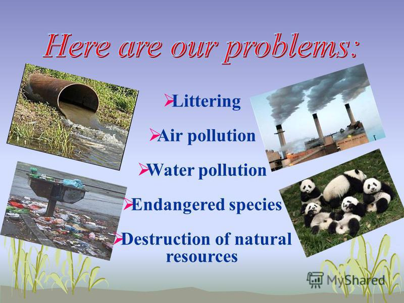 Littering Air pollution Water pollution Endangered species Destruction of natural resources